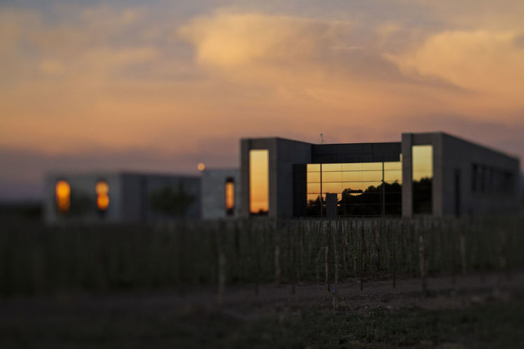 Modern building sunrise Andes Industry Modern Modern Architecture Sunset_collection Travel Architecture Argentina Beauty In Nature Building Exterior Built Structure Day Glass Industry Nature No People Outdoors Patagonia Patagonia Argentina Sky Sunrise Sunset Travel Destinations Vineyard Window