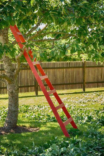 Gardening 😀👍