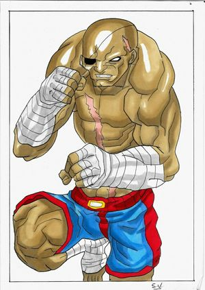 By Sam Sagat realized with promarkers and graph'it on A4 paper. Doodle Drawing Dessin Art Gallery CAPCOM Manga Comics My Art Art Street Fighter