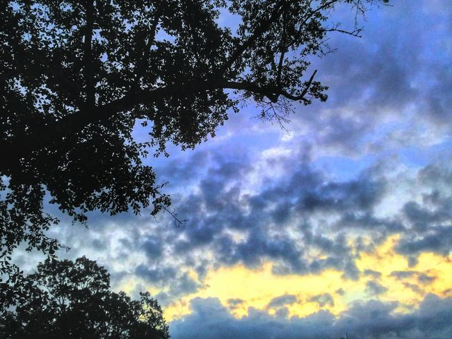 Another day that I don't get to see the Sunrise, so I rely on memory. Nature Silhouette Cloud And Sky
