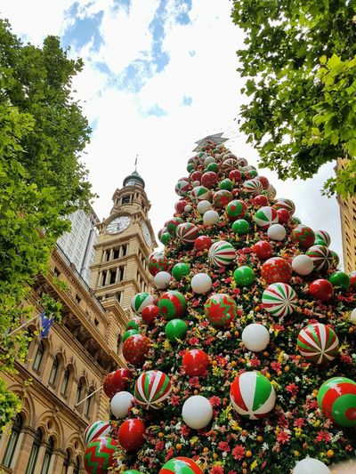 Christmas tree in Sydney Sydney, Australia Tree City Religion Architecture Sky Building Exterior Christmas Ornament Christmas Decoration Christmas Market Christmas Lights christmas tree