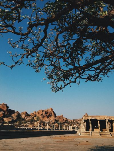 Low Angle View Of Trees Against Old Ruins And Sky On Sunny Day At Hampi