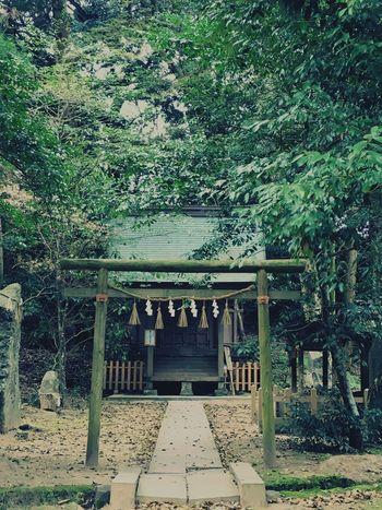 桜井神社 2 福岡県 糸島市 Japan Photography Japanese Shrine Hello World Taking Photos Shrine Of Japan Shrine Sakurai Shrine in Itoshima City Fukuoka,Japan