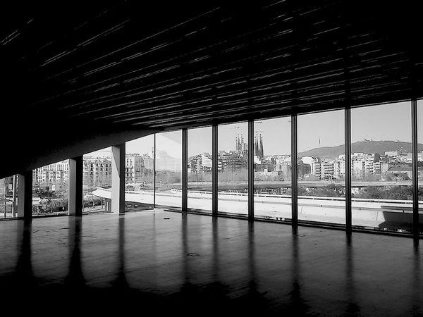 Architecture D-ive Universe