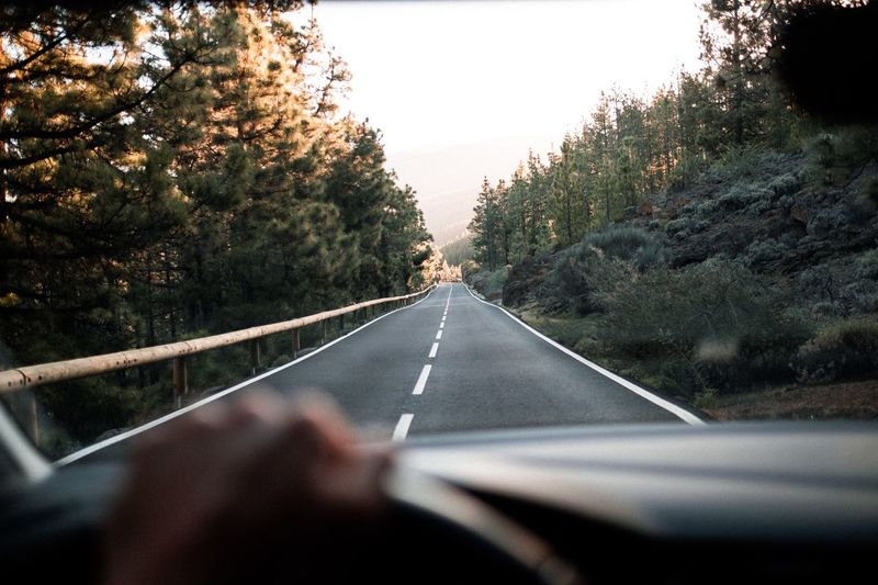 Road trip Hand