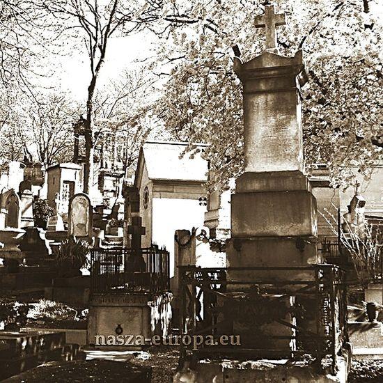 Pere Lachaise. Paryż. Francja Paris Paryż Le Père Lachaise Perelachaise Francja Cemetery Black & White France Memories France