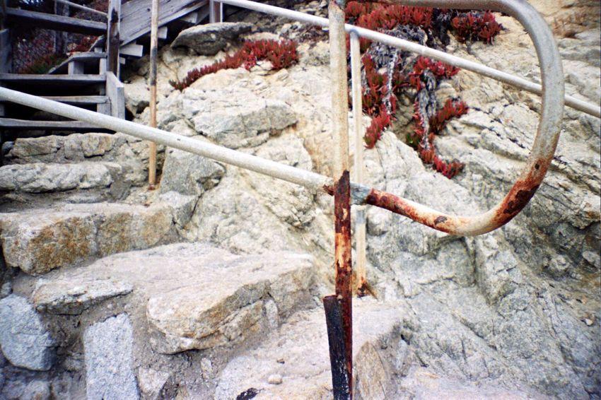 No People Carmel Highlands Film Koduckgirl La Sardina Portra800 Beach Rock