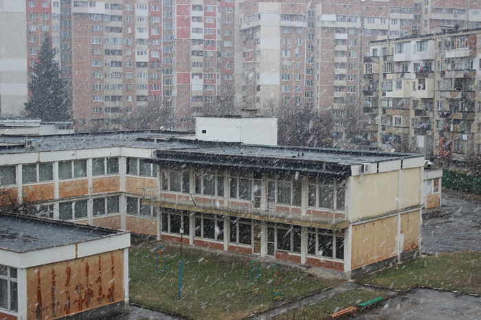 Architecture Building Exterior Building Terrace Built Structure City Cityscape Cold Temperature Day Nature No People Outdoors Residential Building Snow Snowing Wet Apartment Weather Wintertime White Black Bare Tree Tree Winter Rainy Season