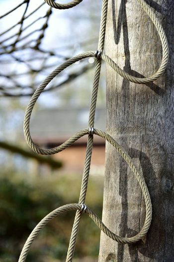 Close-up of rope against wood