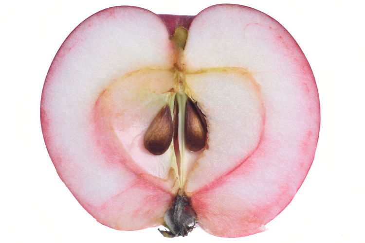 Half apple isolated on white background Eating Freshness Seed Apple - Fruit Close-up Cross Section Cut Out Directly Above Flower Food Food And Drink Freshness Fruit Half Moon Healthy Eating Indoors  Juicy No People Pink Color Plant Ripe Seed Single Object Studio Shot Sweet Food Wellbeing White Background