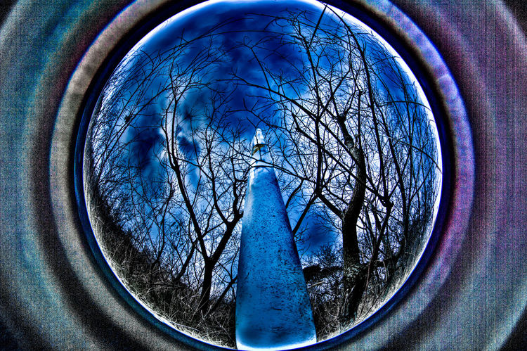 RESONATOR of Nature Daed Plant Dark EyeEmNewHere Hanging Out Japan Tree Darkness And Light Dead Fisheye Hdr Edit Pole Resonator Sky White
