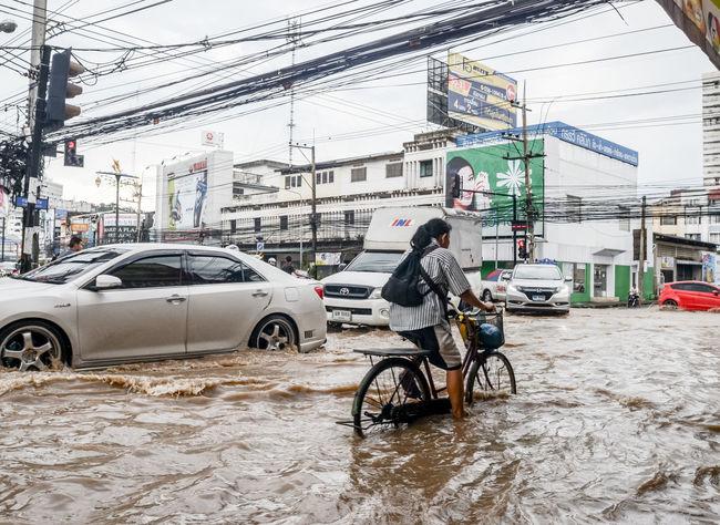 SRIRACHA, THAILAND - October 29 : Flood after heavy rain in Sriracha, Chonburi, Thailand on 29 October 2016 Bicycle Biker Car Flood Land Vehicle Mode Of Transport Nature Outdoors People Road Street Town Traffic Transport Transportation Water Wet Woman
