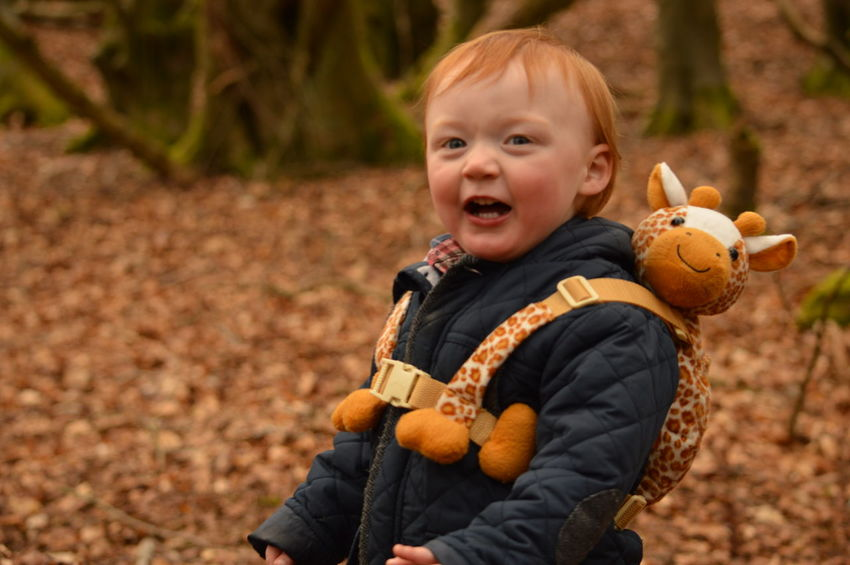 Autumn Leaves Child Childhood Family Giraffe Laughing Laughter Oranges And Browns Outdoors Red Hair Scotland Smiles Woodland Walk EyeEmNewHere Moments Of Happiness