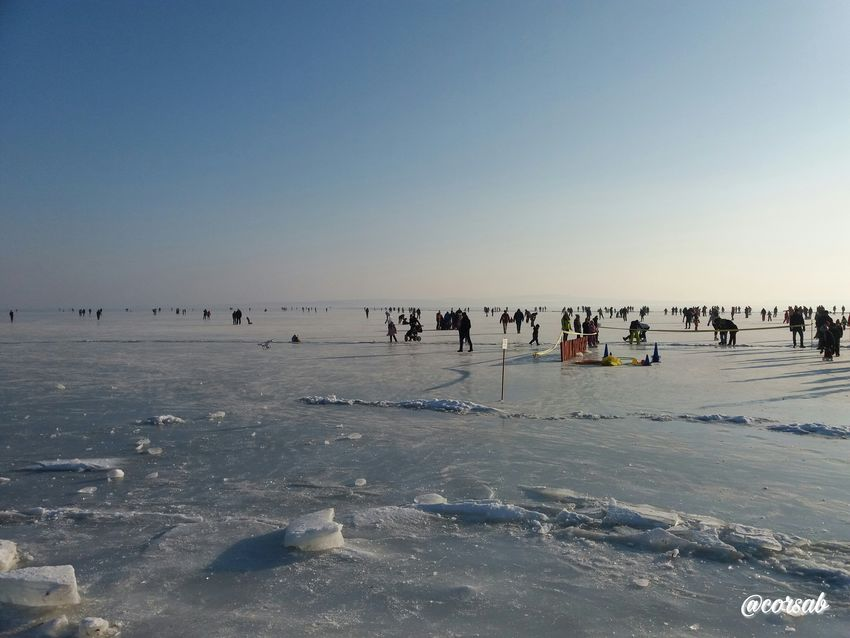 Magyarország Vonyarcvashegy Balaton Samsungphotography Sky Frozen Lake Large Group Of People Beach Outdoors Winter ❄️frozen❄️ Day People EyeEm Gallery Photography Hungary