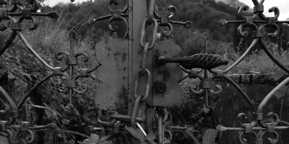 Close-up of old rusty metal gate