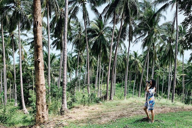 Woman standing by palm trees on field in forest