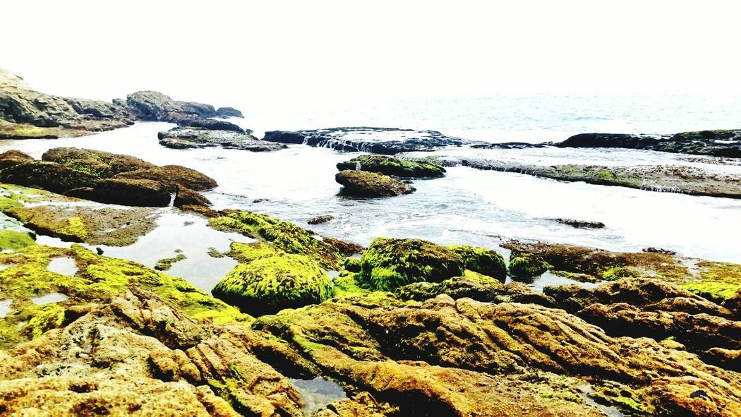 Where curiousity takes you.. .. Adventure Beauty In Nature Scenics Sea Water Rock Formation Rocky Flowing Calm Rock Outdoors Beautiful Beach Photography Dana Point, Ca Rock - Object Moss Day Shore Travel Destinations Beachphotography Beautiful Nature Wave Simplicity Solitude