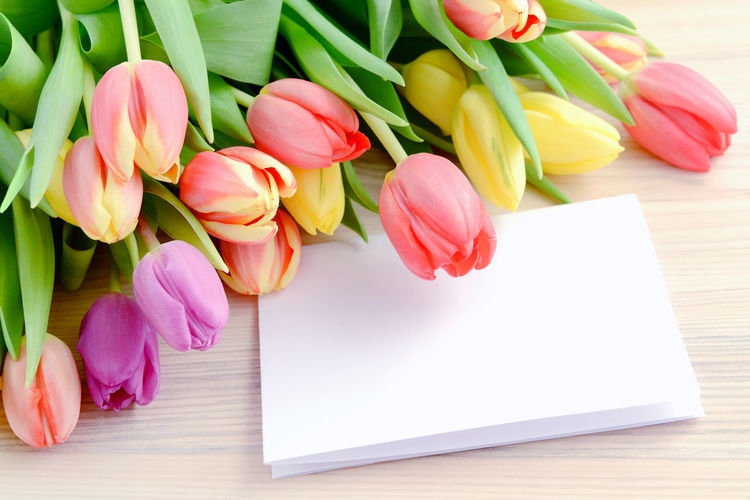 Close-up of tulips and greeting card on table