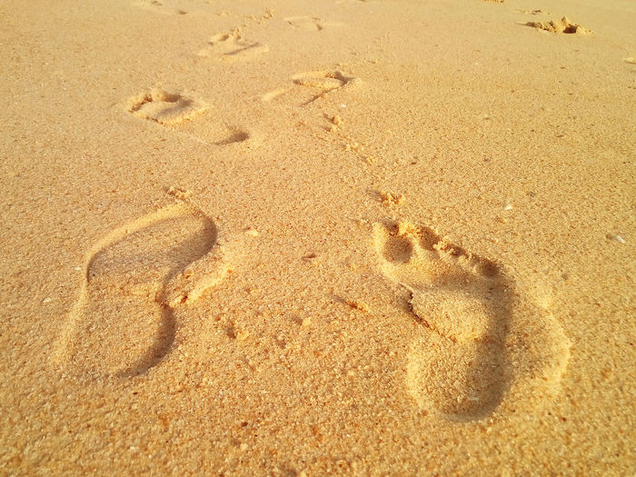 Barefoot And Footwear Beach Day FootPrint Nature No People Outdoors Paw Print Sand Sunlight Vacations