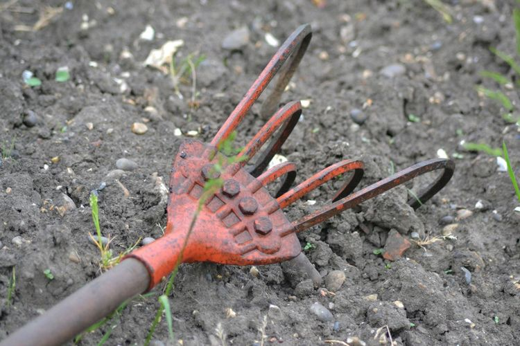 Photograph of a Red Rake on some Soil with a scattering of Stones. Harsh Dirty Gardening Allotment Tools