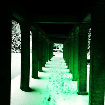 Instavse Winter Park Green