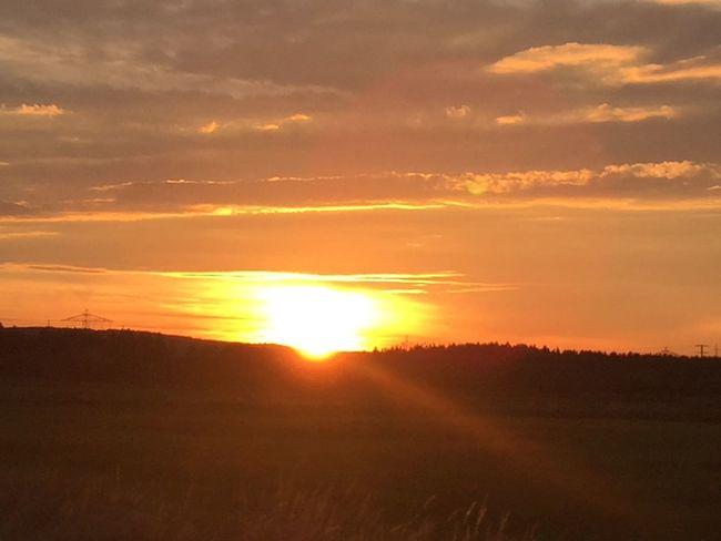Abenddämmerung Abendhimmel Abendsonne Abendstimmung Evening Sky Evening Sun Sonnenstrahlen Sonnenuntergang Sun Sunset The Great Outdoors - 2017 EyeEm Awards Travel Destinations Trees