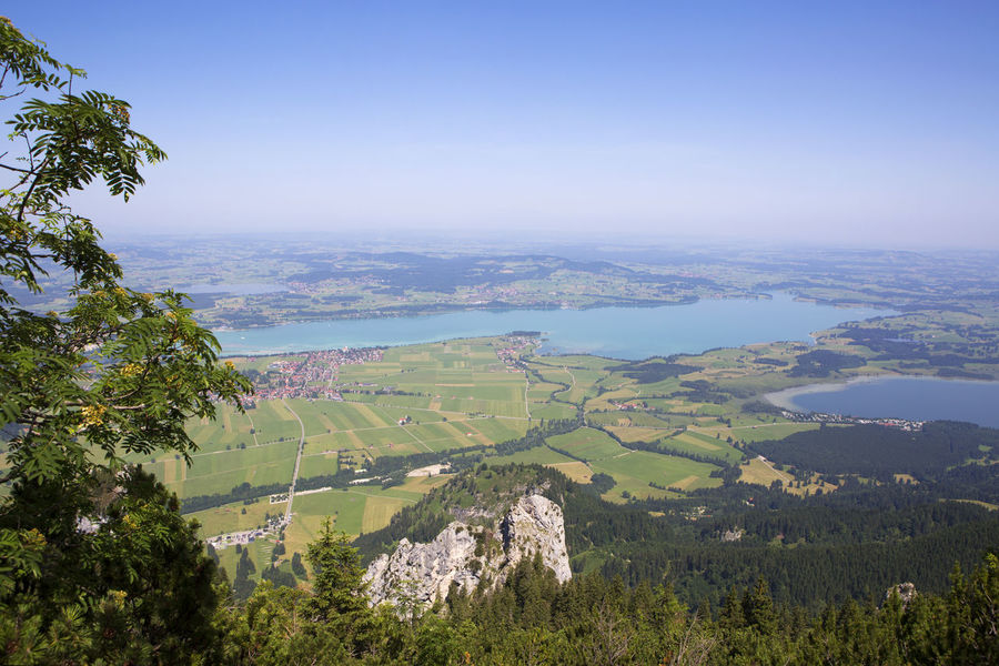 Bavaria Agriculture Beauty In Nature Clear Sky Day Field Forggensee Green Color Landscape Mountain Nature No People Outdoors Patchwork Landscape Rural Scene Scenics Sky Tranquil Scene Tranquility Tree