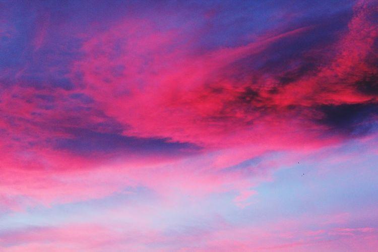 sunrise 1 Sunrise Pink