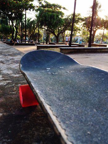 Skate all day Skate Boarding