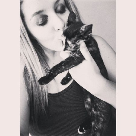 I love cats s2 Cats Babycats Animals Instanimal cute