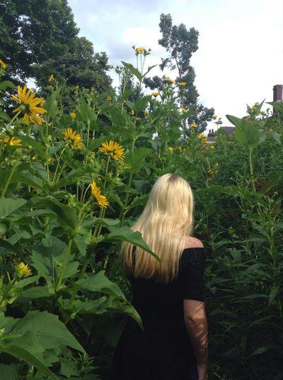 Finally some sunshine☀️🌻✨ Hellosunshine No Clouds Nature Meet Megan
