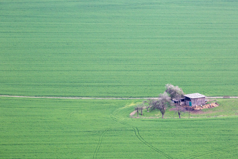 Barn Beauty In Nature Field Grass Grassy Grazing Green Green Color Green Color Landscape Nature No People Non-urban Scene Pattern Rural Rural Scene Scenics Simplicity Spring Trees View From Above The Architect - 2016 EyeEm Awards Colour Of Life Color Palette