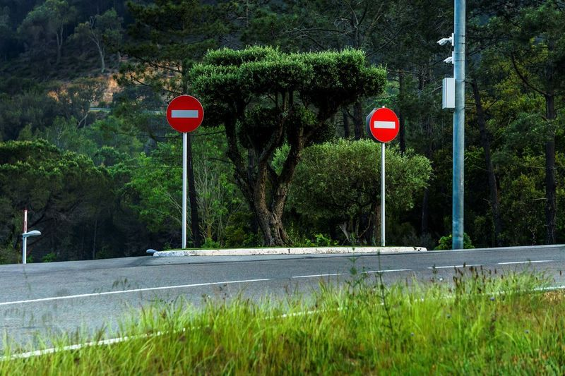 Travel Tree Plant Road Sign Road Sign No People Transportation Communication Day Nature Outdoors Guidance Red Green Color Growth Land Street Flag Patriotism Grass Crash Barrier