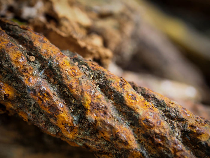 close up rusty