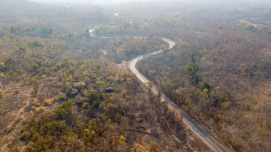 Aerial view road curve transportation from drone Aerial View Environment Road Nature Day No People Plant High Angle View Scenics - Nature Landscape Tree Transportation Land Tranquility Beauty In Nature Forest Non-urban Scene Outdoors Curve Tranquil Scene Above Logistics Transportation Thailand Curve