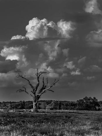 Landscape Black & White Clouds And Sky Check This Out