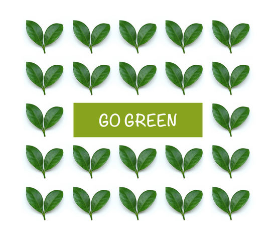 Beauty Of Nature Care Environment Environmental Conservation Go Green Green Greenhouse Hope Kids Future Leaf Love Nature Plant Plant A Tree Recycle Reduce Reuse Save Water Sustainable