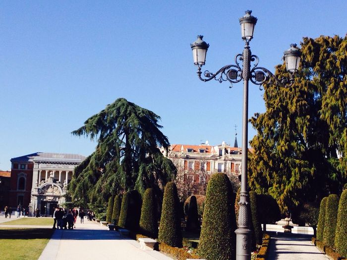 ElRetiro Parqueelretiro Madrid Spain Madrid Built Structure Clear Sky Blue Tree Architecture Street Light Building Exterior Real People Lighting Equipment Outdoors Day City Large Group Of People Sky Nature