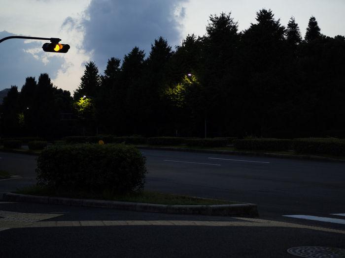 Street light on road