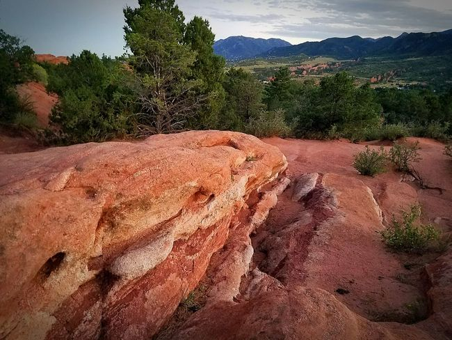 Tree Mountain Travel Destinations Outdoors Beauty In Nature Scenics Garden Of The Gods Red Rocks  Coloradosprings What A View Beauty Around Me Check This Out 😊 S7 Edge Photography