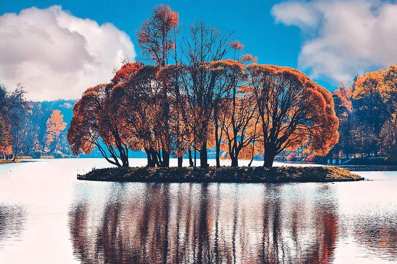 Pixelated Water