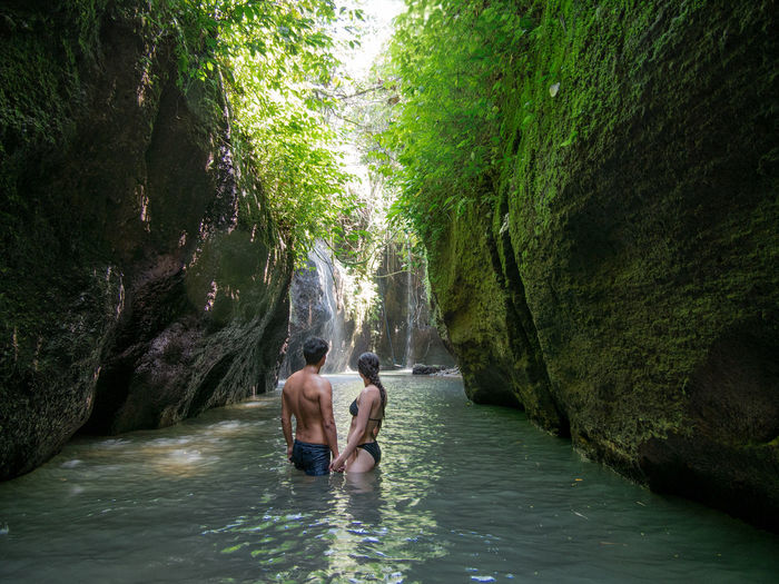 Rear view of shirtless in water amidst trees