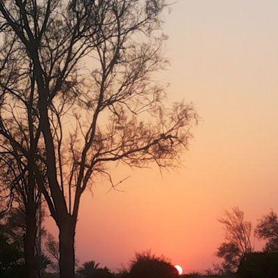 تصويري  القرية  ارامكو البحر غروب الشمس جمال