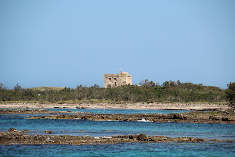 Beautiful detail of the Marine Reserve of Torre Guaceto near Brindisi, Puglia, South Italy. Brindisi Puglia Ruins South Italy Torre Guaceto Wildlife & Nature Architecture Beach Beauty In Nature Blue Building Exterior Built Structure Clear Sky Day Nature No People Old Buildings Outdoors Sea Sky Tree Water