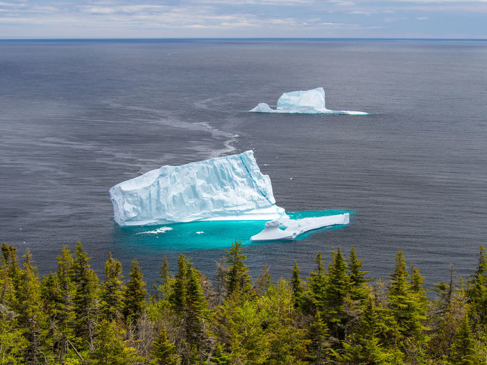 Iceberg on Atlantic ocean near St. John's, Newfoundland, Canada Iceberg Iceberg - Ice Formation Newfoundland Sunny Day St. John's Scenics - Nature Sea Water Beauty In Nature Nature No People Outdoors Ice Glacier Environment Floating On Water Melting Frozen Day
