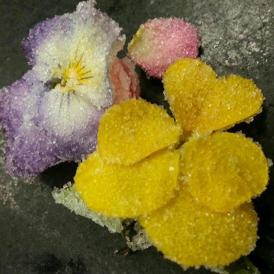 Flores Azucaradas Comestibles
