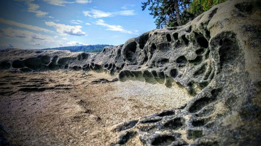 Gabriola shoreline Gabriola Shoreline Sandstone Phoneography The KIOMI Collection