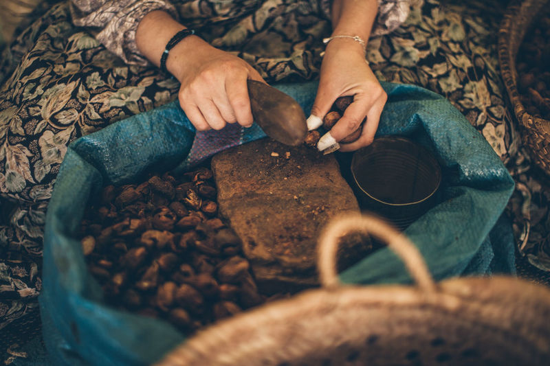 Argan culture Argan ArganOil Argan Nuts Women Hands women around the world Culinary Handmade EyeEm Selects Human Hand Women Sitting Domestic Life High Angle View Low Section Close-up Cultivated Land Agricultural Field