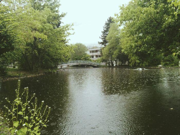 rain drops in a pond Rainy Days Vscocam