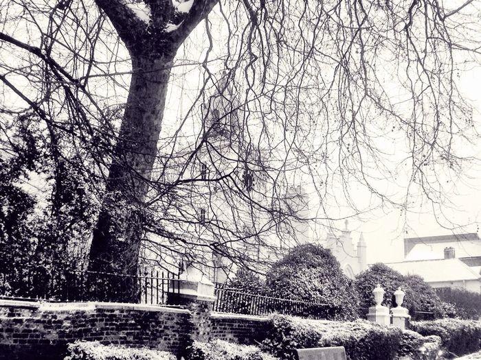 Snowy Days...